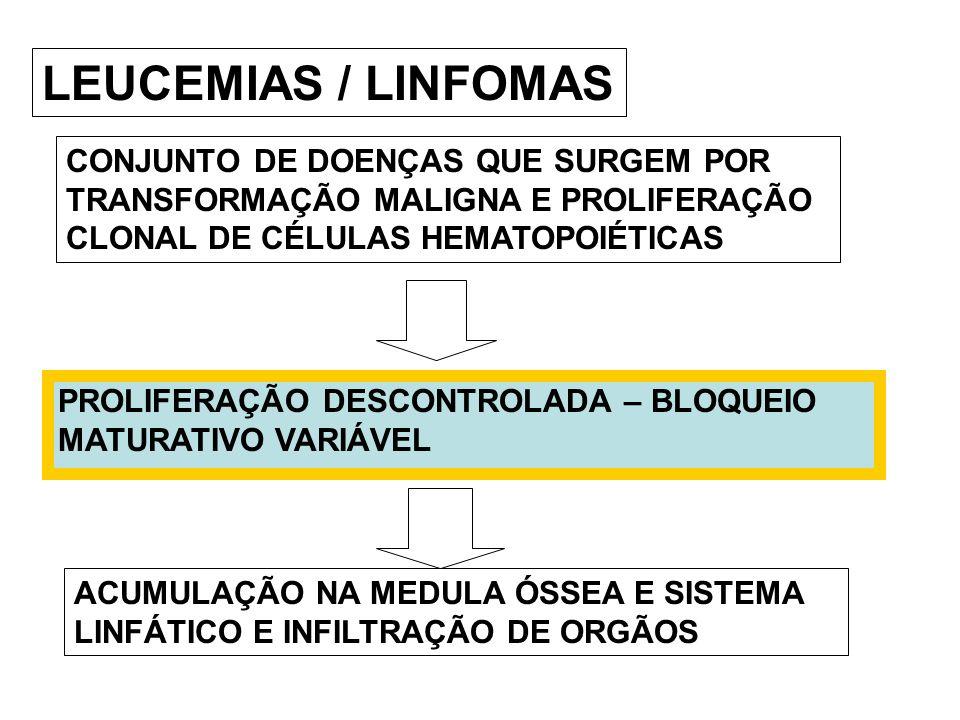 LEUCEMIAS / LINFOMAS CONJUNTO DE DOENÇAS QUE SURGEM POR TRANSFORMAÇÃO MALIGNA E PROLIFERAÇÃO CLONAL DE CÉLULAS HEMATOPOIÉTICAS ACUMULAÇÃO NA MEDULA ÓS