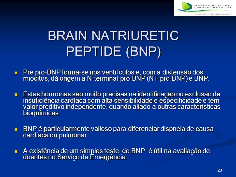 23 BRAIN NATRIURETIC PEPTIDE (BNP) Pre pro-BNP forma-se nos ventrículos e, com a distensão dos miocitos, dá origem a N-terminal-pro-BNP (NT-pro-BNP) e BNP.
