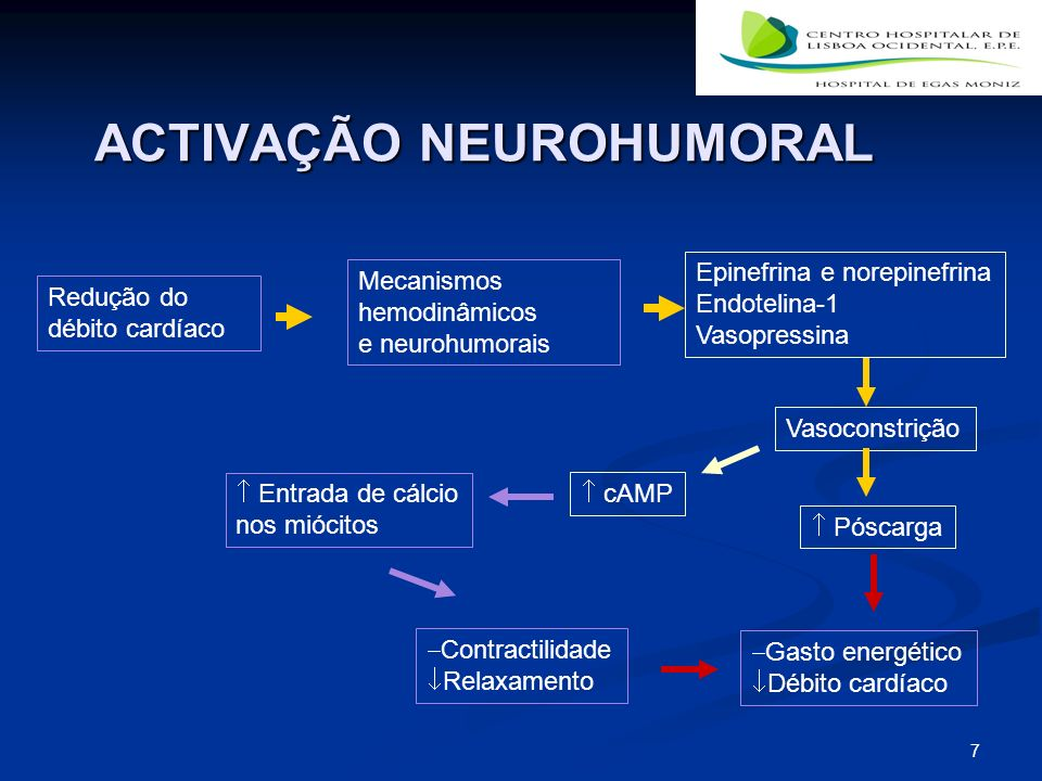 7 ACTIVAÇÃO NEUROHUMORAL Redução do débito cardíaco Mecanismos hemodinâmicos e neurohumorais Epinefrina e norepinefrina Endotelina-1 Vasopressina Contractilidade Relaxamento cAMP Póscarga Entrada de cálcio nos miócitos Gasto energético Débito cardíaco Vasoconstrição