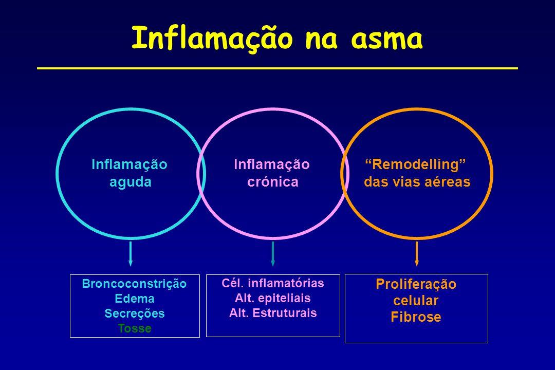 Inflamação na asma Inflamação aguda Remodelling das vias aéreas Broncoconstrição Edema Secreções Tosse Proliferação celular Fibrose Cél. inflamatórias