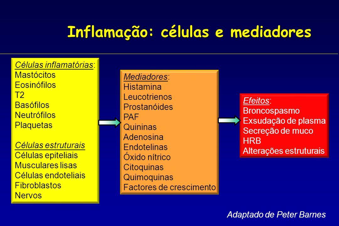 Inflamação: células e mediadores Células inflamatórias: Mastócitos Eosinófilos T2 Basófilos Neutrófilos Plaquetas Células estruturais Células epitelia
