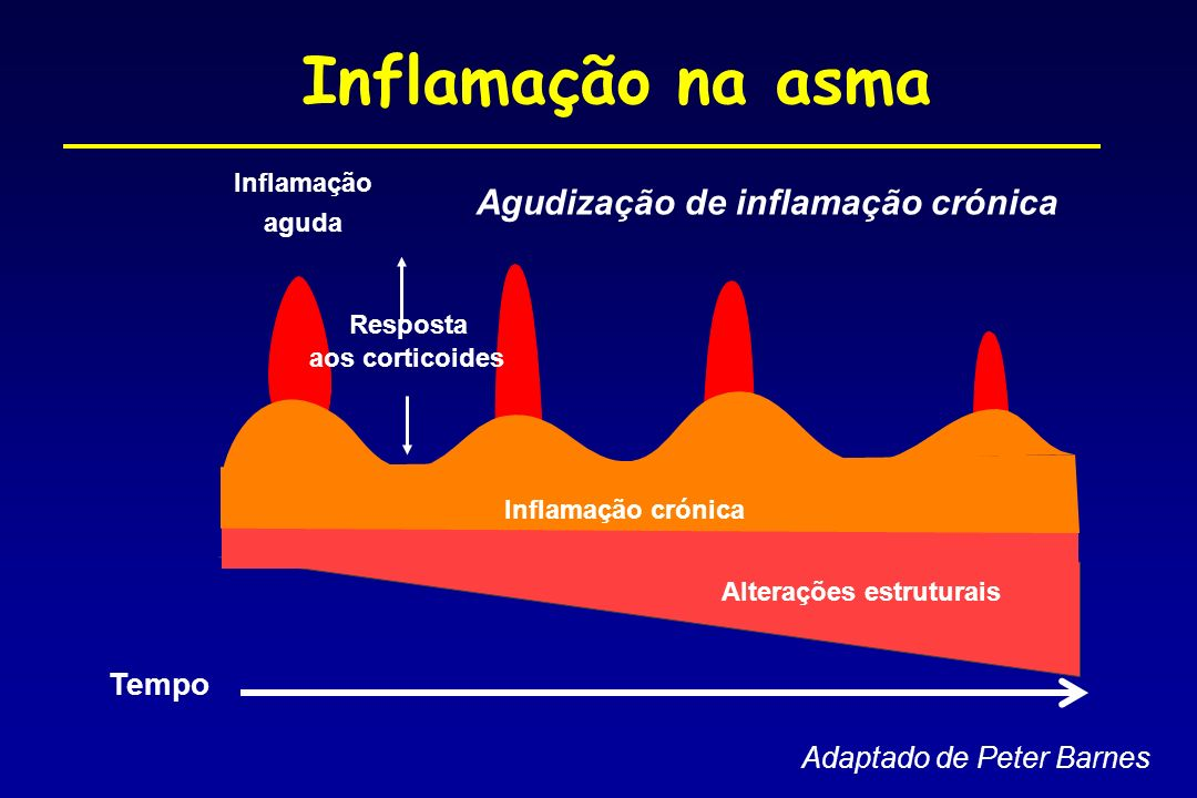 Agudização de inflamação crónica Inflamação aguda Tempo Inflamação na asma Alterações estruturais Inflamação crónica aos corticoides Resposta Adaptado