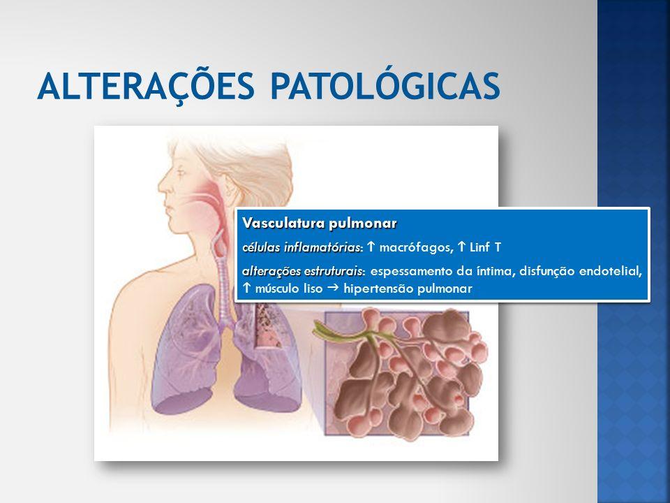 Vasculatura pulmonar células inflamatórias células inflamatórias: macrófagos, Linf T alterações estruturais alterações estruturais: espessamento da ín