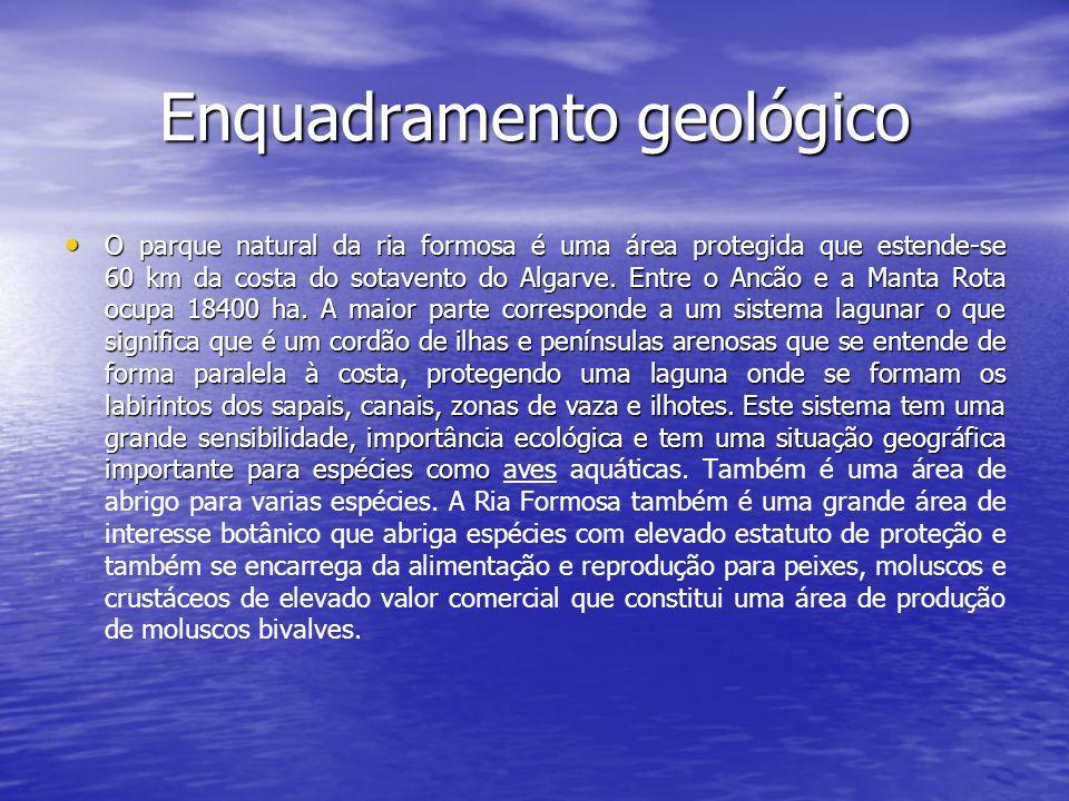 Enquadramento geológico O parque natural da ria formosa é uma área protegida que estende-se 60 km da costa do sotavento do Algarve. Entre o Ancão e a