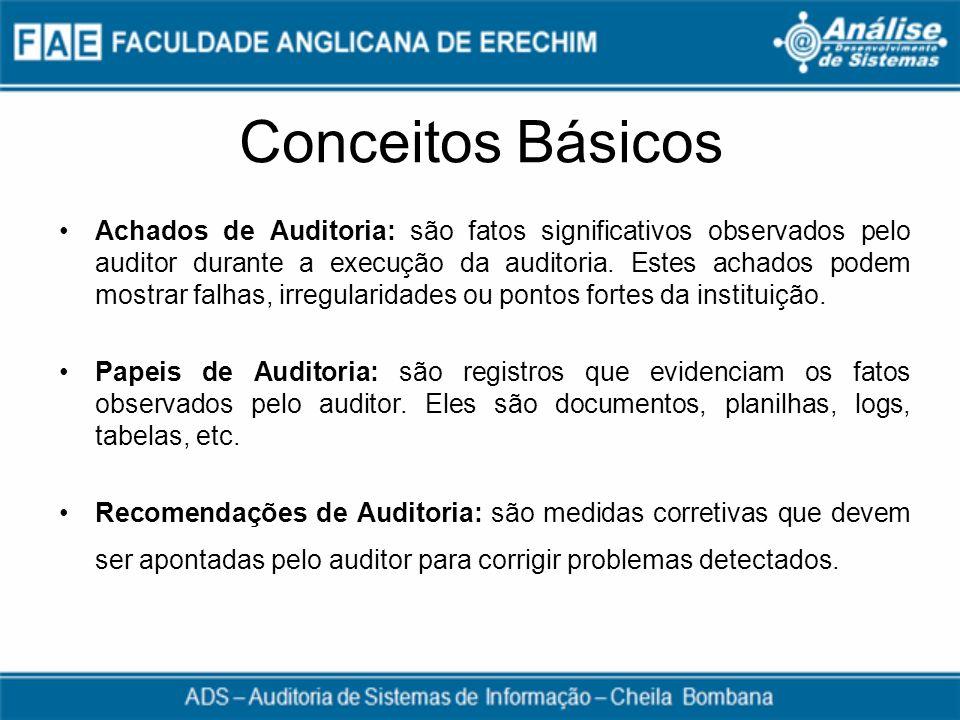 Conceitos Básicos Achados de Auditoria: são fatos significativos observados pelo auditor durante a execução da auditoria. Estes achados podem mostrar
