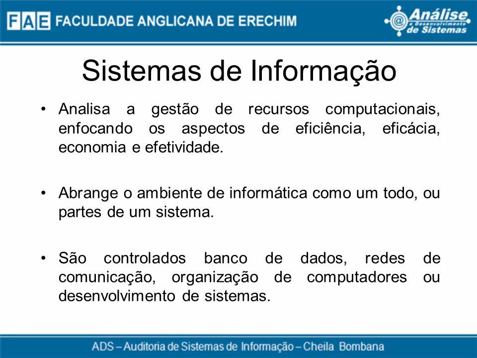 Sistemas de Informação Analisa a gestão de recursos computacionais, enfocando os aspectos de eficiência, eficácia, economia e efetividade. Abrange o a