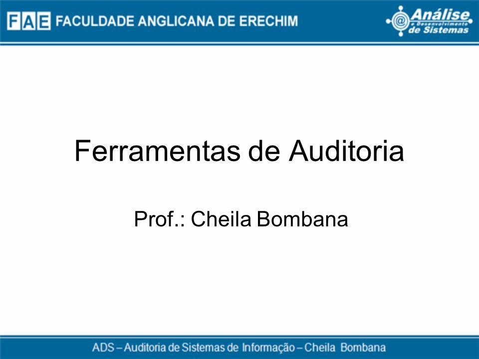 Ferramentas de Auditoria Prof.: Cheila Bombana