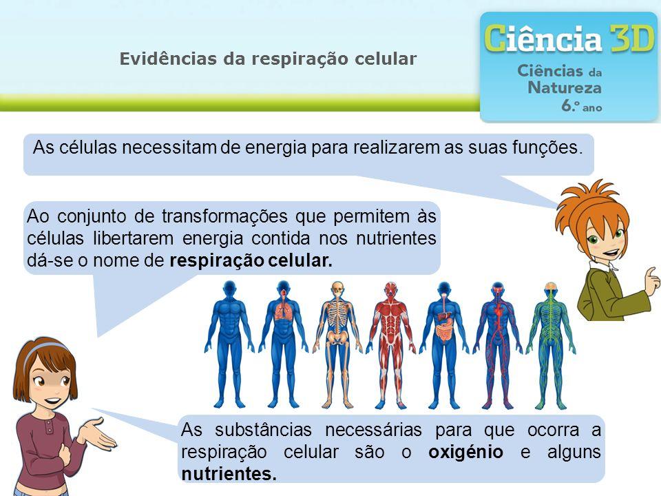 Evidências da respiração celular Mas como é que essas substâncias chegam às células.
