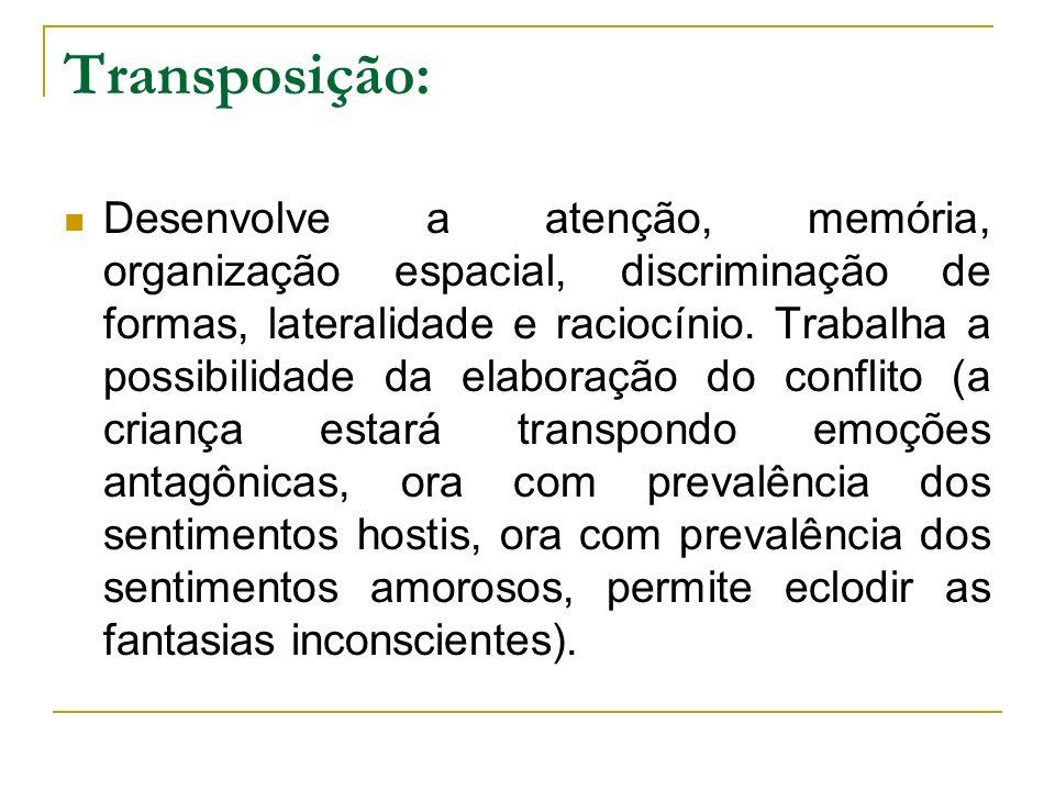 Transposição: Desenvolve a atenção, memória, organização espacial, discriminação de formas, lateralidade e raciocínio. Trabalha a possibilidade da ela