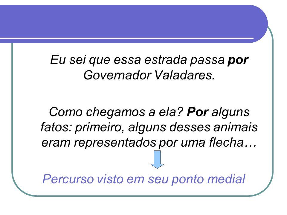 Eu sei que essa estrada passa por Governador Valadares. Como chegamos a ela? Por alguns fatos: primeiro, alguns desses animais eram representados por
