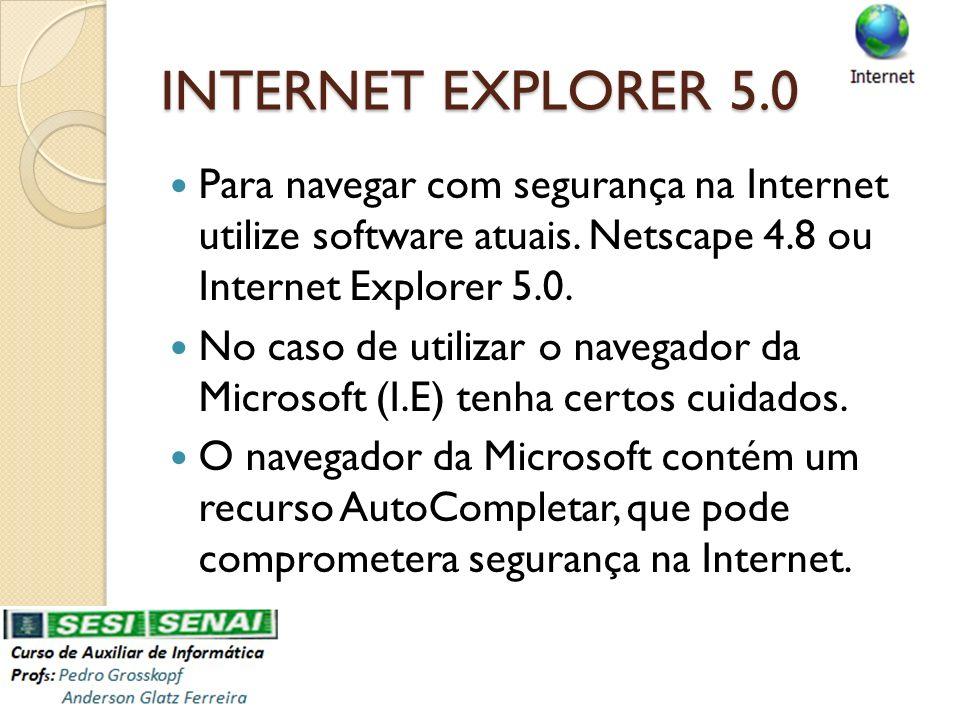 INTERNET EXPLORER 5.0 Para navegar com segurança na Internet utilize software atuais. Netscape 4.8 ou Internet Explorer 5.0. No caso de utilizar o nav