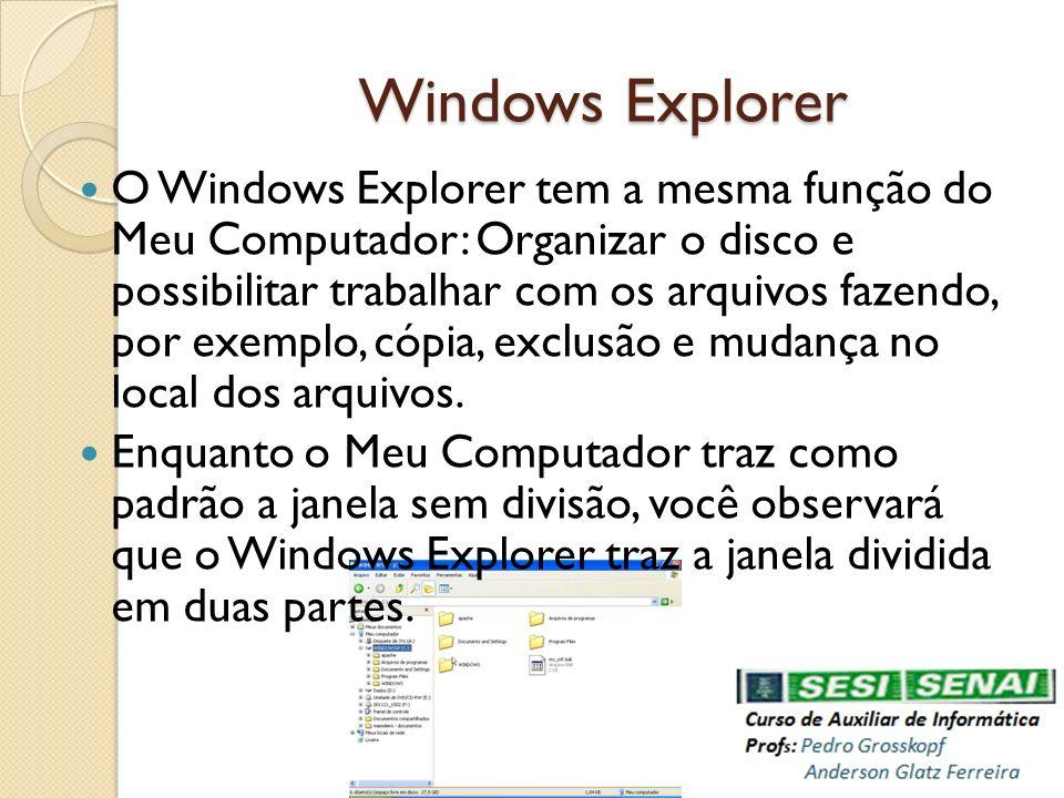 Windows Explorer O Windows Explorer tem a mesma função do Meu Computador: Organizar o disco e possibilitar trabalhar com os arquivos fazendo, por exem