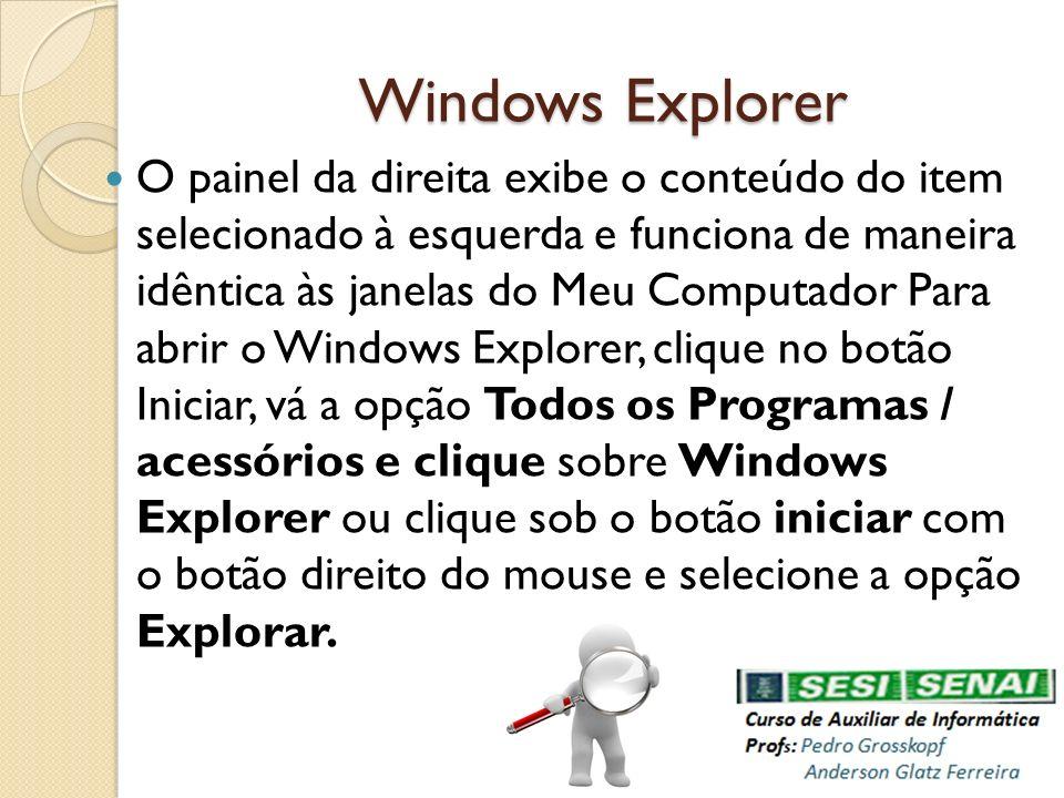 Windows Explorer O painel da direita exibe o conteúdo do item selecionado à esquerda e funciona de maneira idêntica às janelas do Meu Computador Para