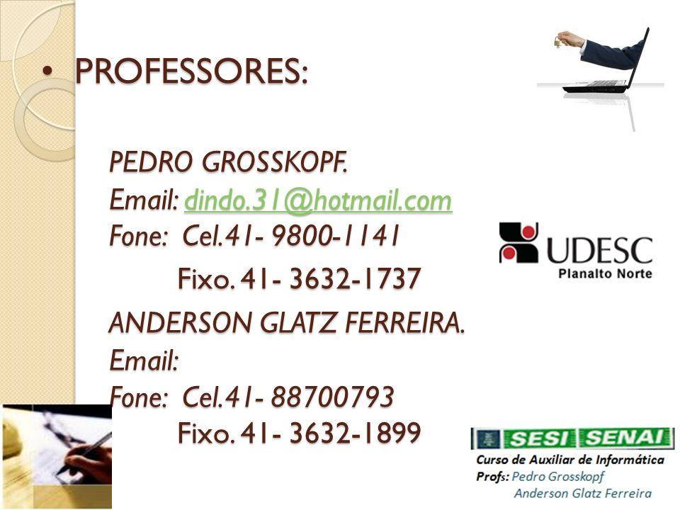 PROFESSORES: PEDRO GROSSKOPF. Email: dindo.31@hotmail.com Fone: Cel.41- 9800-1141 Fixo. 41- 3632-1737 ANDERSON GLATZ FERREIRA. Email: Fone: Cel.41- 88