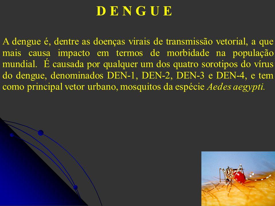 D E N G U E A dengue é, dentre as doenças virais de transmissão vetorial, a que mais causa impacto em termos de morbidade na população mundial. É caus