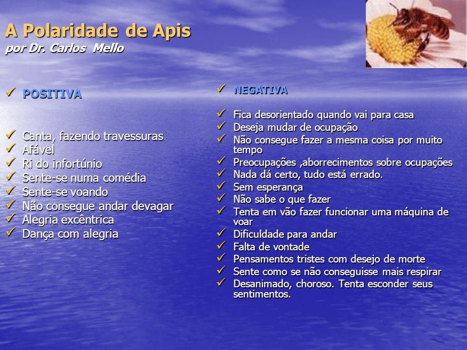 A Polaridade de Apis por Dr. Carlos Mello POSITIVA POSITIVA Canta, fazendo travessuras Canta, fazendo travessuras Afável Afável Ri do infortúnio Ri do