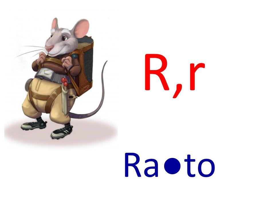 R,r Rato