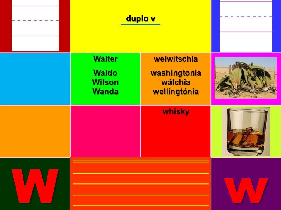 WalterWaldoWilsonWandawelwítschiawashingtoniawálchiawellingtónia whisky Ww duplo v