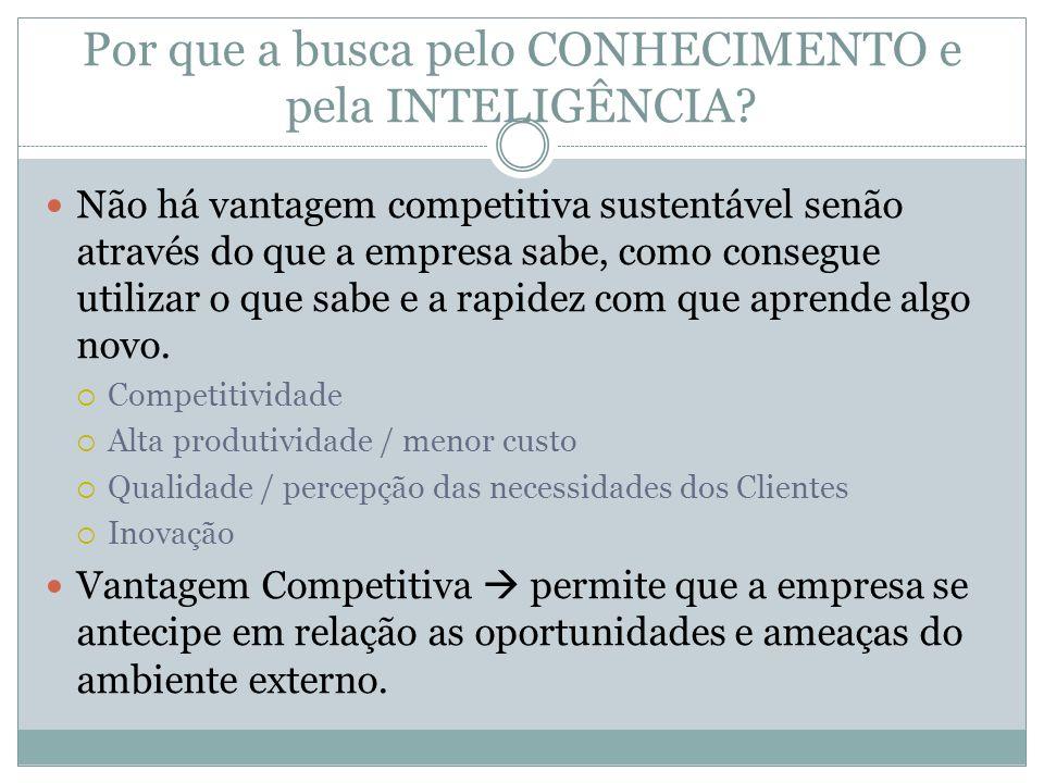 Por que a busca pelo CONHECIMENTO e pela INTELIGÊNCIA? Não há vantagem competitiva sustentável senão através do que a empresa sabe, como consegue util