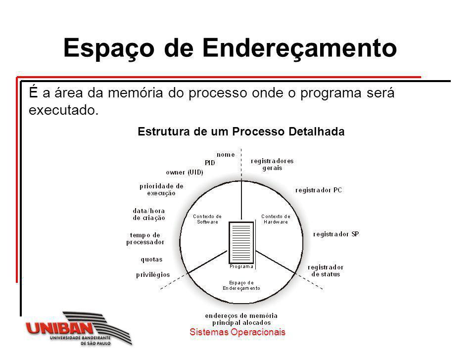 É a área da memória do processo onde o programa será executado. Sistemas Operacionais Espaço de Endereçamento Estrutura de um Processo Detalhada