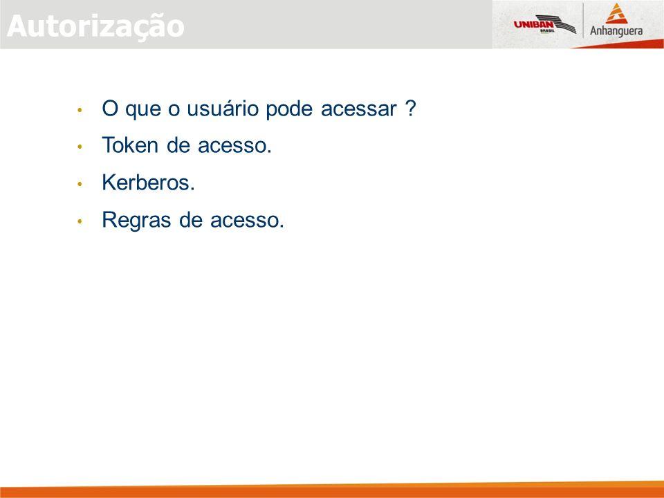 O que o usuário pode acessar ? Token de acesso. Kerberos. Regras de acesso. Autorização