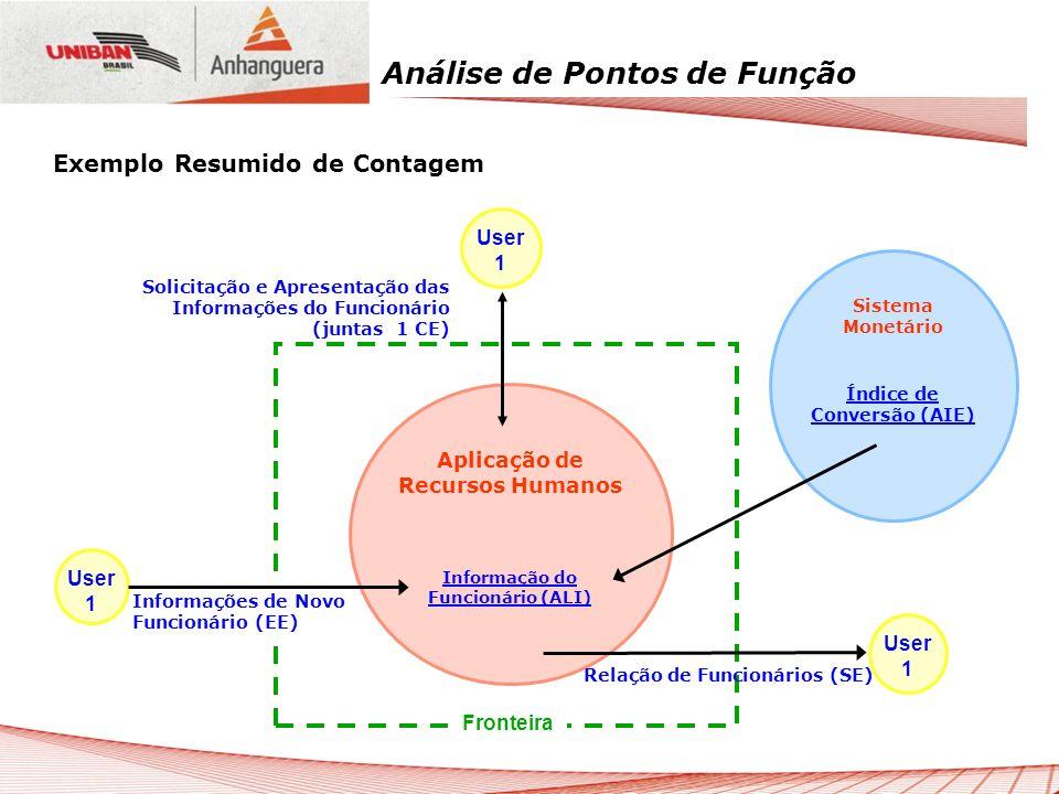 Análise de Pontos de Função Informações de Novo Funcionário (EE) User 1 Sistema Monetário Índice de Conversão (AIE) Aplicação de Recursos Humanos Info
