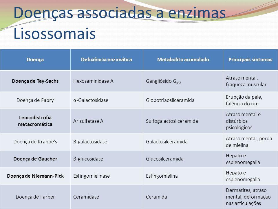 Doenças associadas a enzimas Lisossomais DoençaDeficiência enzimáticaMetabolito acumuladoPrincipais sintomas Doença de Tay-SachsHexosaminidase AGangli