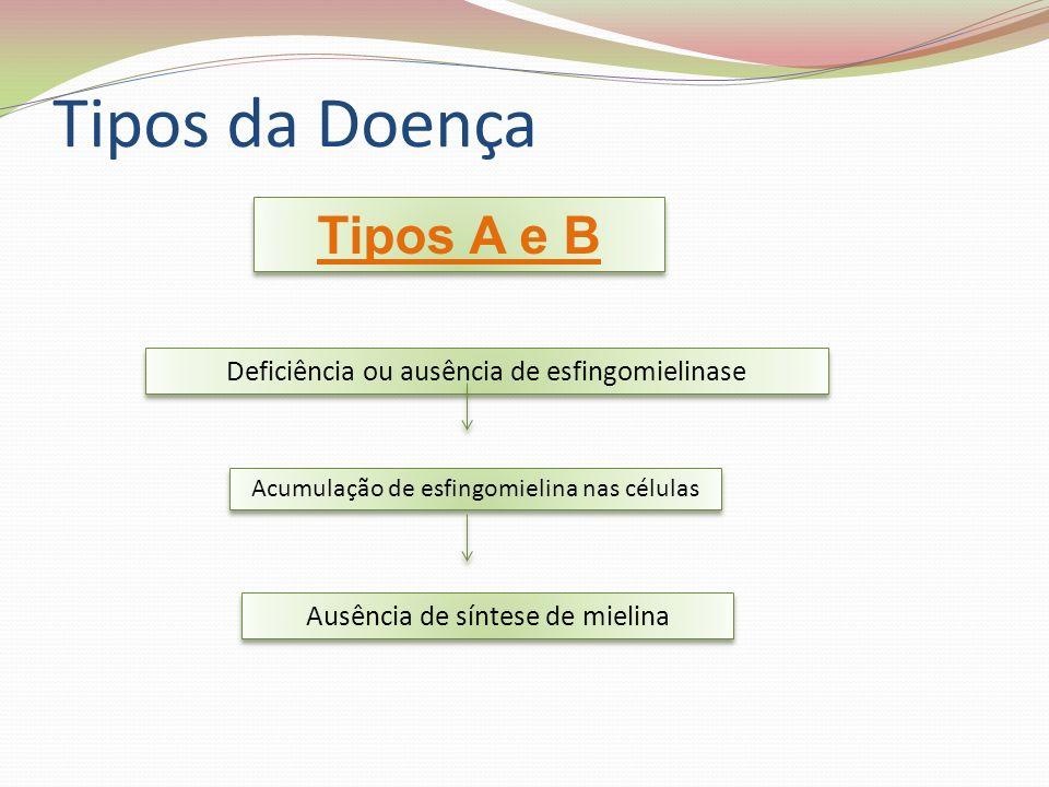 Sintomas Tipo A – aumento importante de baço e fígado (hepatoesplenomegalia) – atraso do desenvolvimento psicomotor.