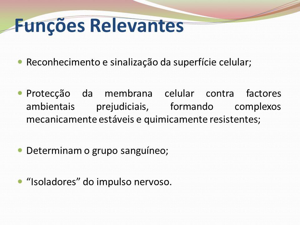 Funções Relevantes Reconhecimento e sinalização da superfície celular; Protecção da membrana celular contra factores ambientais prejudiciais, formando