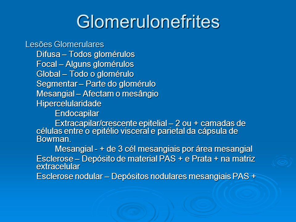 Glomerulonefrites Lesões Glomerulares Difusa – Todos glomérulos Focal – Alguns glomérulos Global – Todo o glomérulo Segmentar – Parte do glomérulo Mes
