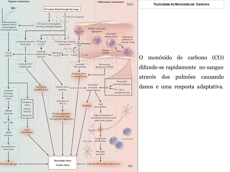 STRYER, Lubert; BERG, Jeremy M.; TYMOCZKO, John L., Biochemistry, 5ª edição, International Edition, New York 2002 http://bases.bireme.br/cgi- bin/wxislind.exe/iah/online/?IsisScript=iah/iah.xis&src=google&base=LILACS&lan g=p&nextAction=lnk&exprSearch=402577&indexSearch=ID http://en.wikipedia.org/wiki/Heme_oxygenase http://www.bobschuster.com/co/damage/ http://en.wikipedia.org/wiki/Heme http://ltc.nutes.ufrj.br/toxicologia/mIX.gas.htm http://www.coladaweb.com/quimica/quimica-ambiental/a-toxicidade-do- monoxido-de-carbono http://www.geocities.com/fisiologiaplicada/prod04e.htm Bibliografia e cibergrafia