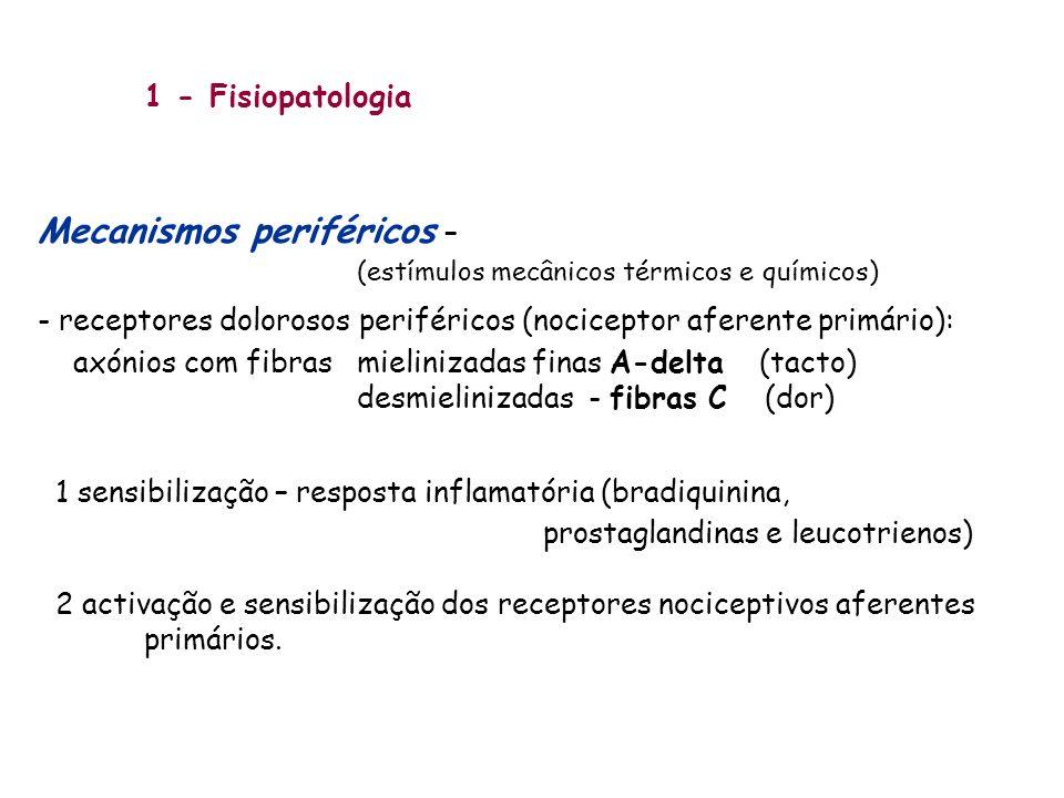 1 - Fisiopatologia Mecanismos periféricos – (estímulos mecânicos térmicos e químicos) - receptores dolorosos periféricos (nociceptor aferente primário