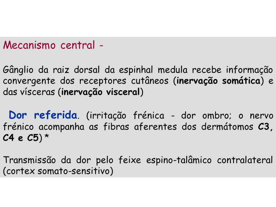 Mecanismo central - Gânglio da raiz dorsal da espinhal medula recebe informação convergente dos receptores cutâneos (inervação somática) e das víscera