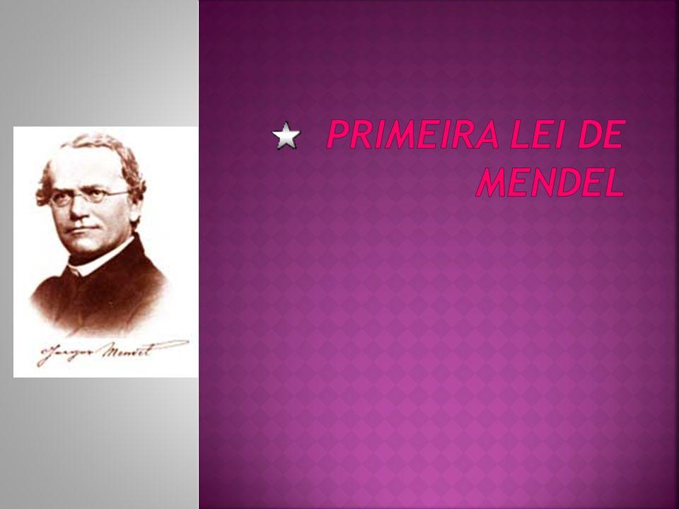 Gregor Mendel (1822 – 1884), um monge austríaco, cultivou e estudou durante sua vida, as ervilhas-de-cheiro (Pisum sativum).