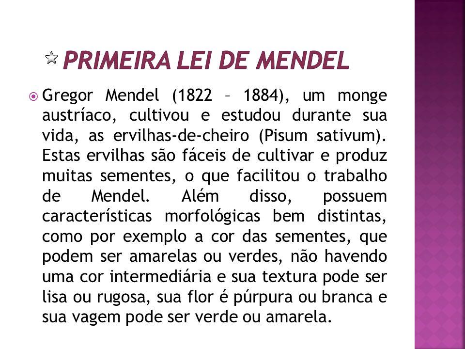 Gregor Mendel (1822 – 1884), um monge austríaco, cultivou e estudou durante sua vida, as ervilhas-de-cheiro (Pisum sativum). Estas ervilhas são fáceis