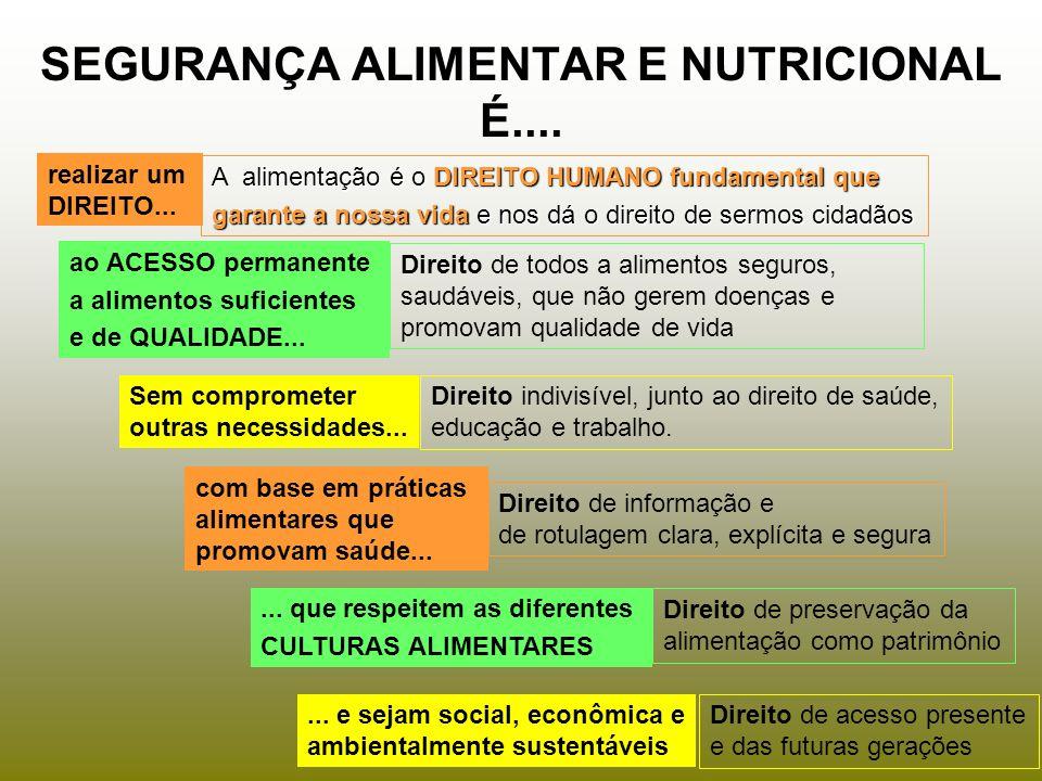 SEGURANÇA ALIMENTAR E NUTRICIONAL É.... realizar um DIREITO... ao ACESSO permanente a alimentos suficientes e de QUALIDADE... Sem comprometer outras n