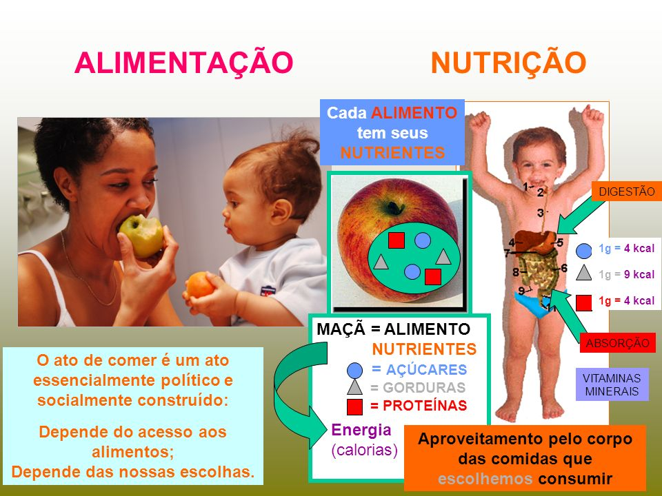 ALIMENTAÇÃO NUTRIÇÃO 1g = 4 kcal 1g = 9 kcal 1g = 4 kcal MAÇÃ = ALIMENTO NUTRIENTES = AÇÚCARES = GORDURAS = PROTEÍNAS Aproveitamento pelo corpo das co