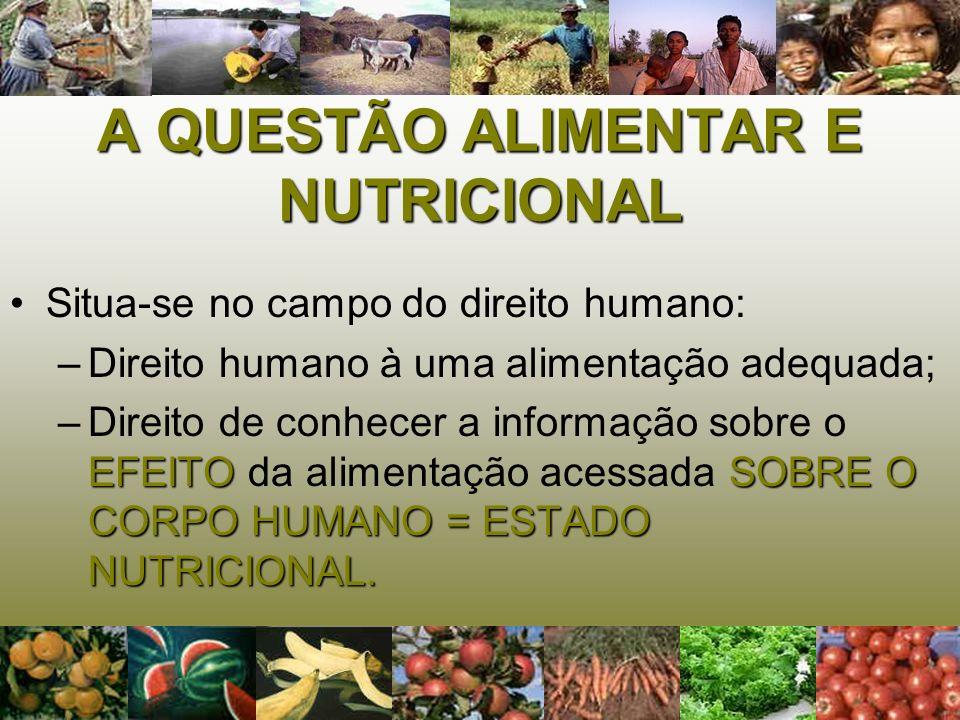 A QUESTÃO ALIMENTAR E NUTRICIONAL Situa-se no campo do direito humano: –D–Direito humano à uma alimentação adequada; –D–Direito de conhecer a informaç