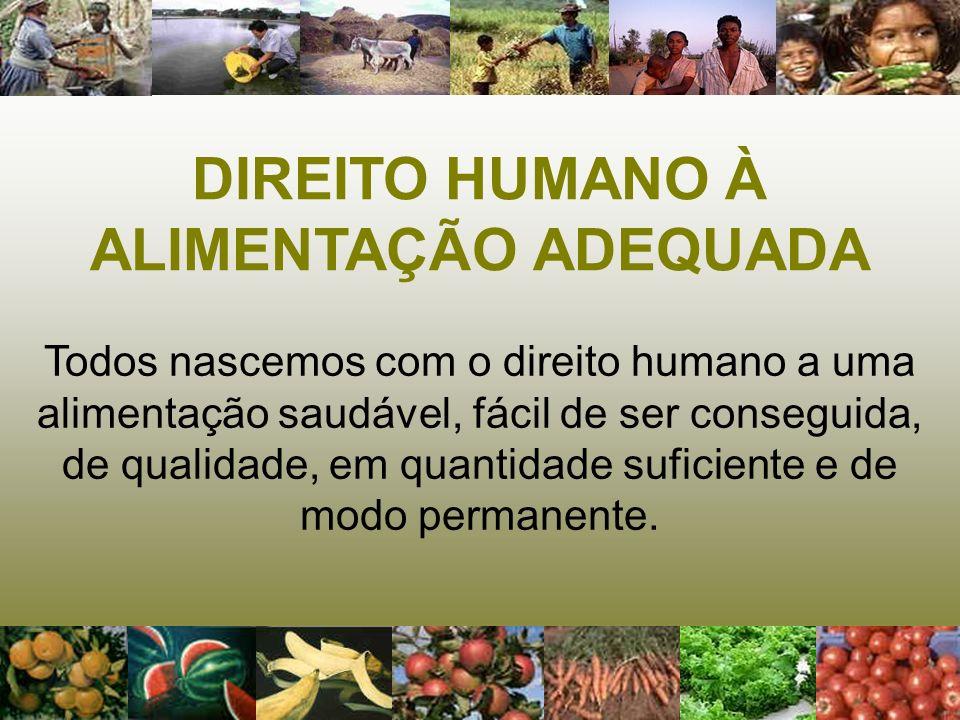 DIREITO HUMANO À ALIMENTAÇÃO ADEQUADA (DHAA) Composto de duas partes inseparáveis: - toda pessoa tem o direito de estar livre da fome e da má-nutrição; - toda pessoa tem o direito a uma alimentação adequada.
