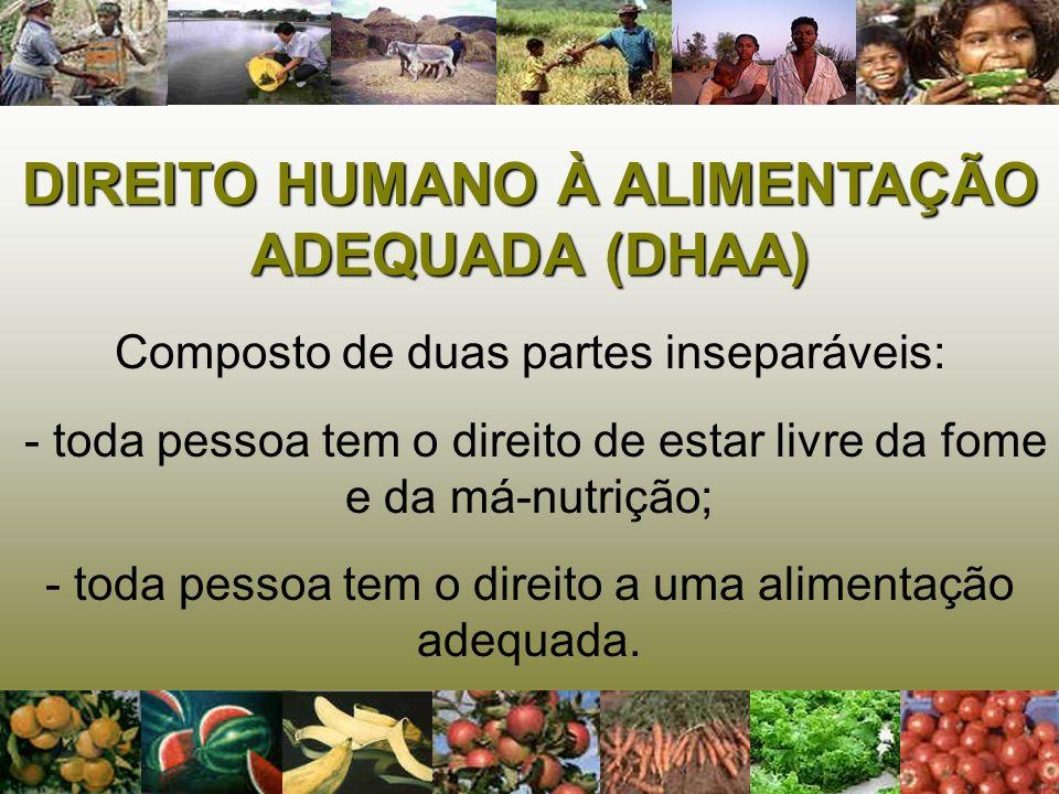 Para a garantia do DIREITO HUMANO À ALIMENTAÇÃO ADEQUADA é necessário que tenhamos SEGURANÇA ALIMENTAR E NUTRICIONAL e, esta depende da garantia da SOBERANIA ALIMENTAR.