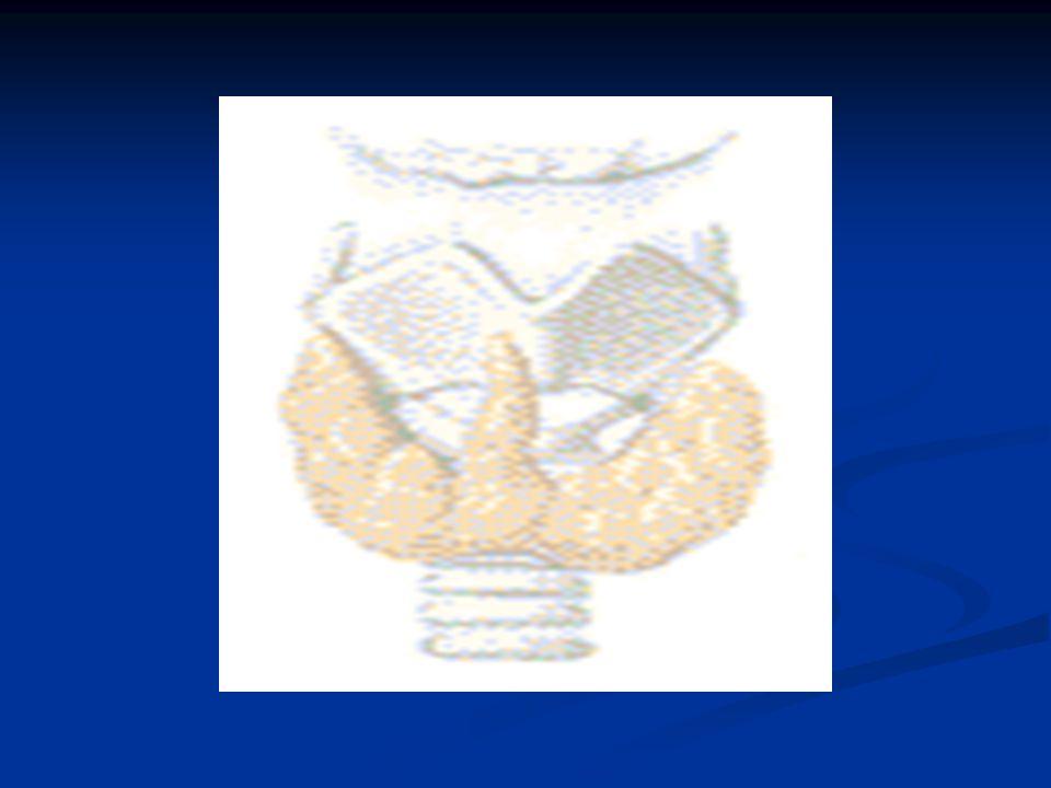 HIPOTIREOIDISMO ( MIXEDEMA) Crianças com hipotireoidismo desde o nascimento são denominadas Cretinas (cretinismo) e apresentam as seguintes características: Crianças com hipotireoidismo desde o nascimento são denominadas Cretinas (cretinismo) e apresentam as seguintes características: Anões Anões Retardo Mental Retardo Mental Língua grande e contraída Língua grande e contraída Ventre protuso Ventre protuso Causas : 1.