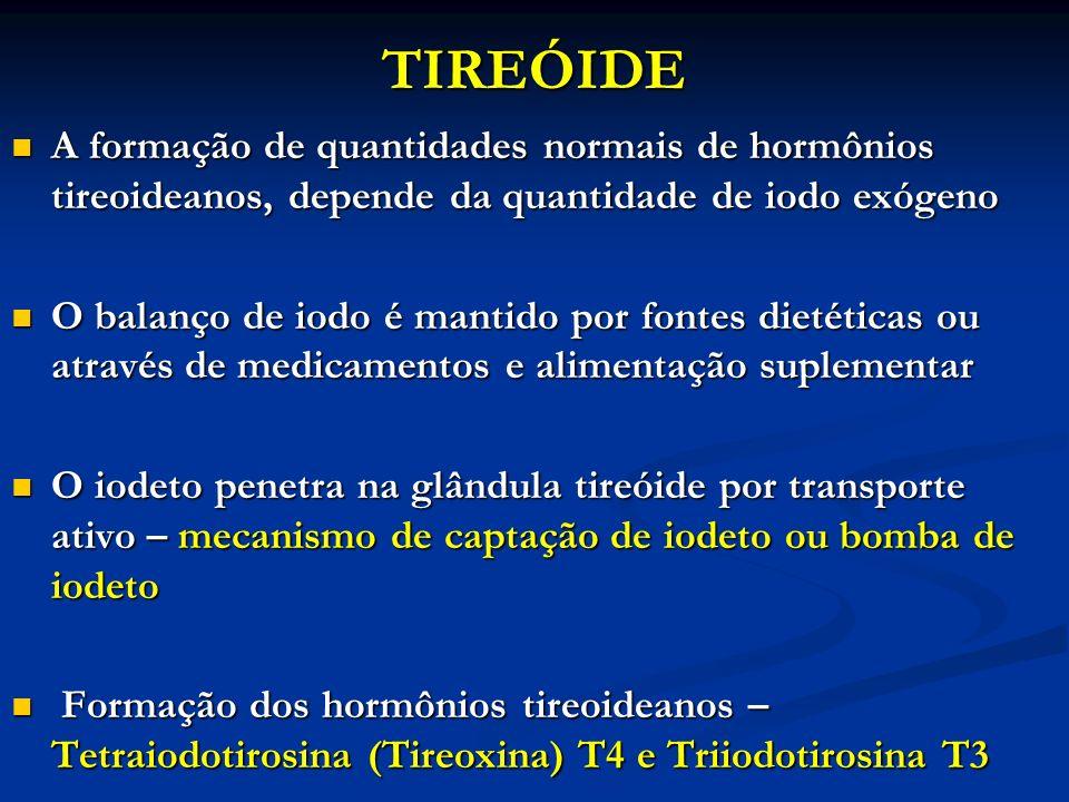 TIREÓIDE A formação de quantidades normais de hormônios tireoideanos, depende da quantidade de iodo exógeno A formação de quantidades normais de hormô