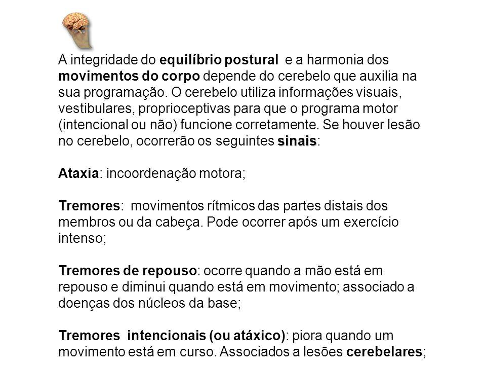 Déficit de Equilíbrio: Base Postural Alargada; Tônus Muscular: Diminuição do Tônus Muscular (Estado de tensão do músculo, mesmo em estado de repouso); Incoordenação Motora: Erros na força, extensão e direção do movimento; Disdiadococinesia: Dificuldade de realizar movimentos rápidos e alternados; Dismetria: Dificuldade na realização da amplitude dos movimentos.