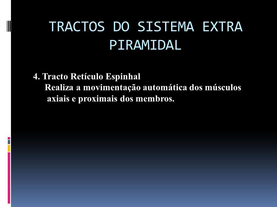 TRACTOS DO SISTEMA EXTRA PIRAMIDAL 4. Tracto Retículo Espinhal Realiza a movimentação automática dos músculos axiais e proximais dos membros.