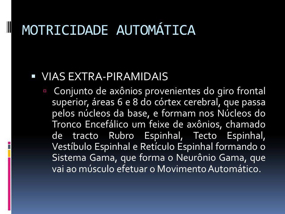MOTRICIDADE AUTOMÁTICA VIAS EXTRA-PIRAMIDAIS Conjunto de axônios provenientes do giro frontal superior, áreas 6 e 8 do córtex cerebral, que passa pelo