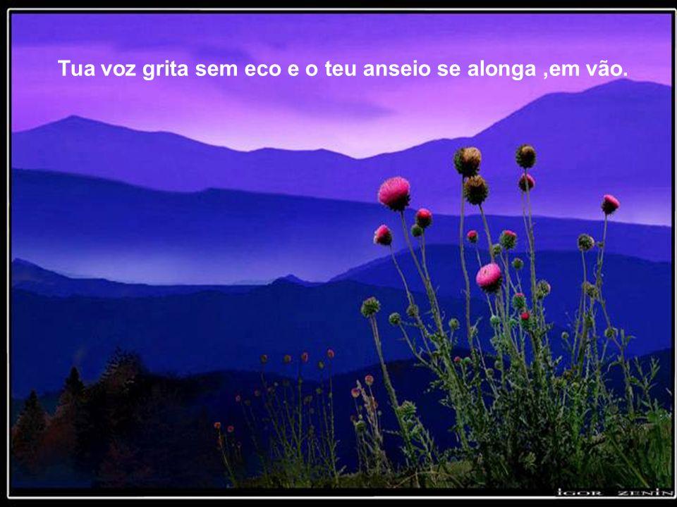 Em torno de ti, a claridade, mas também o silêncio... Dentro de ti, a felicidade de saber, mas igualmente a dor de não seres compreendido...