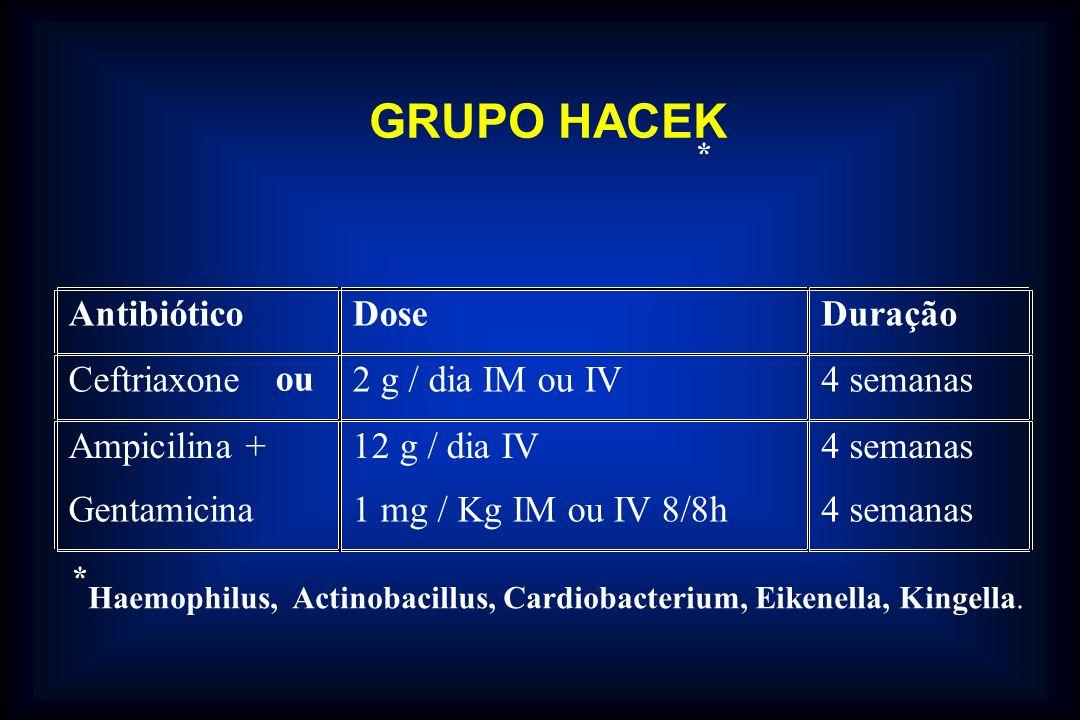 AntibióticoDoseDuração Ceftriaxone ou 2 g / dia IM ou IV4 semanas Ampicilina + Gentamicina 12 g / dia IV 1 mg / Kg IM ou IV 8/8h 4 semanas GRUPO HACEK