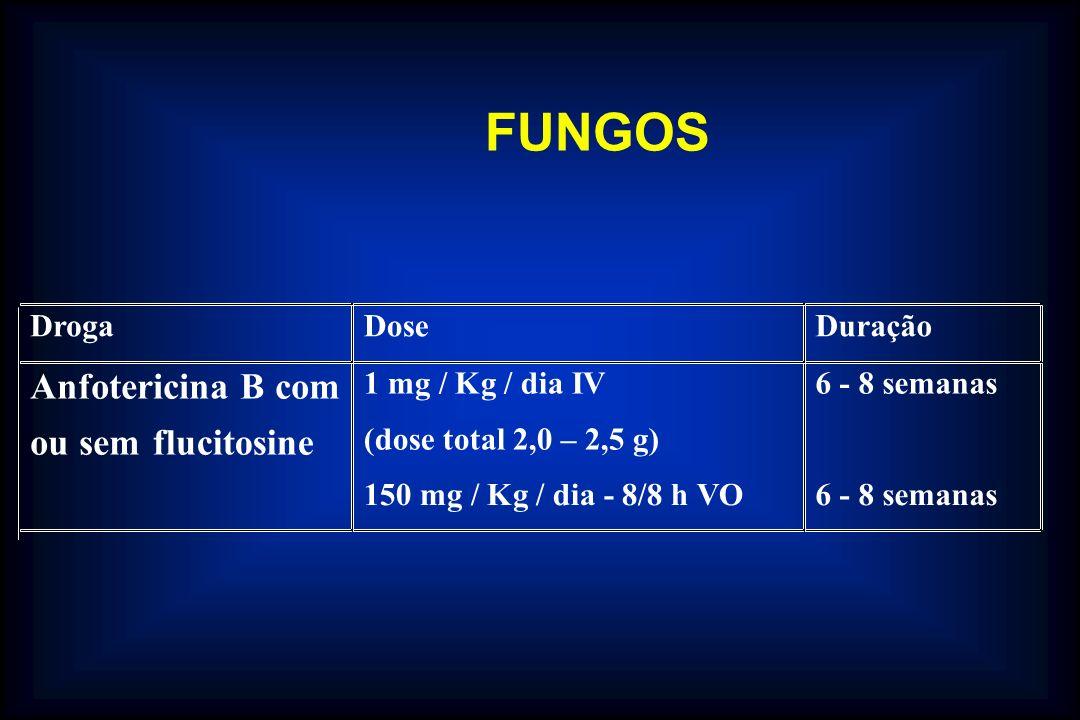 DrogaDoseDuração Anfotericina B com ou sem flucitosine 1 mg / Kg / dia IV (dose total 2,0 – 2,5 g) 150 mg / Kg / dia - 8/8 h VO 6 - 8 semanas FUNGOS