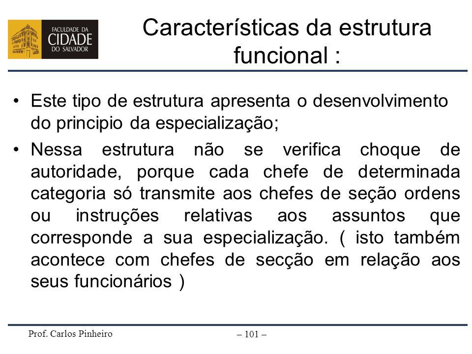 Prof. Carlos Pinheiro – 101 – Características da estrutura funcional : Este tipo de estrutura apresenta o desenvolvimento do principio da especializaç