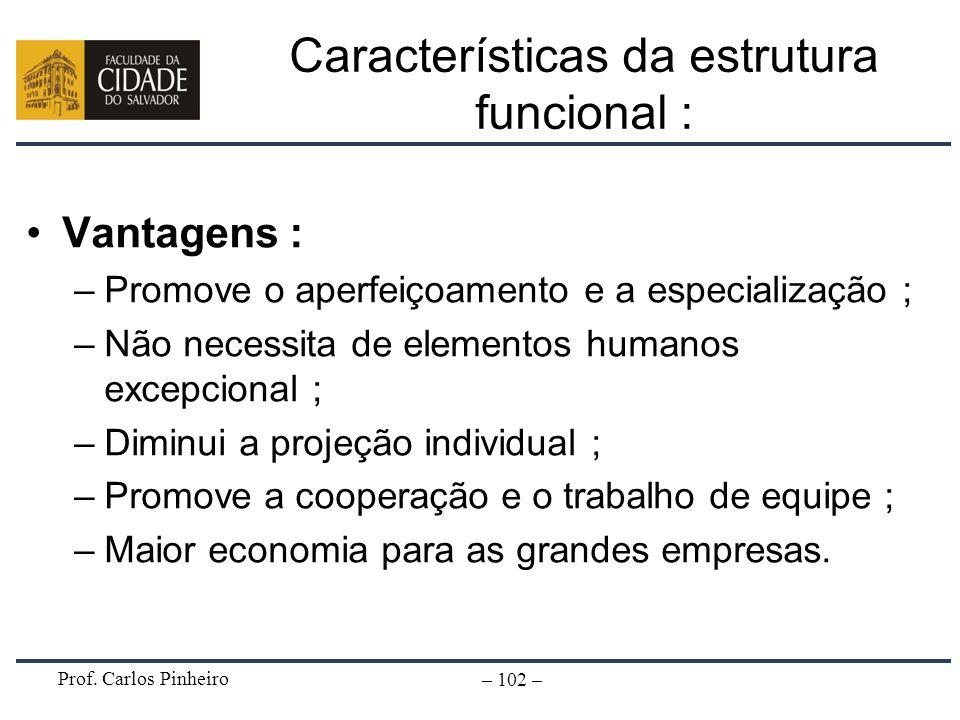 Prof. Carlos Pinheiro – 102 – Vantagens : –Promove o aperfeiçoamento e a especialização ; –Não necessita de elementos humanos excepcional ; –Diminui a